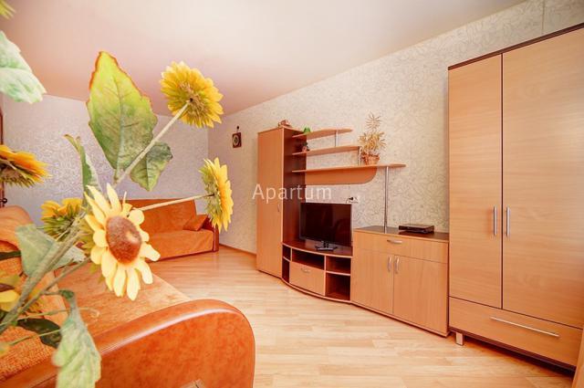 1-комнатная квартира на Однокомнатная квартира посуточно с видом на Московский проспект в Санкт-Петербурге
