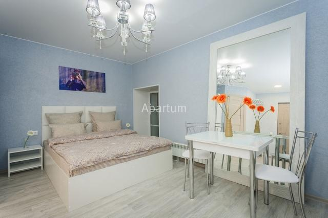 1-комнатная квартира на Студия посуточно у Московского вокзала на 4 Советской 8-11 в Санкт-Петербурге